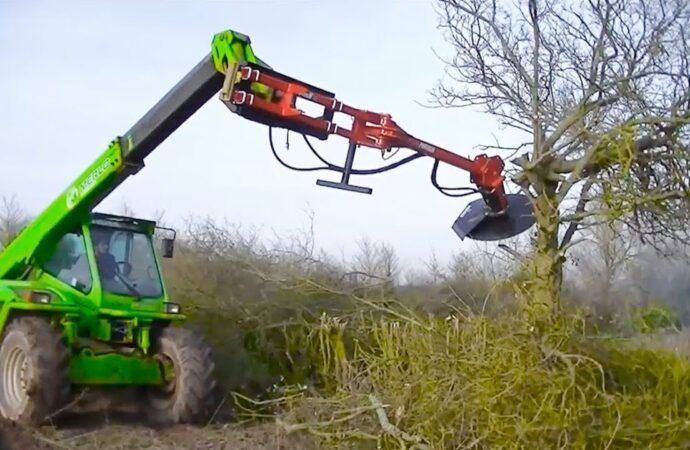 Tree Trimming Services-Haines City FL Tree Trimming and Stump Grinding Services-We Offer Tree Trimming Services, Tree Removal, Tree Pruning, Tree Cutting, Residential and Commercial Tree Trimming Services, Storm Damage, Emergency Tree Removal, Land Clearing, Tree Companies, Tree Care Service, Stump Grinding, and we're the Best Tree Trimming Company Near You Guaranteed!